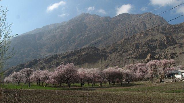 Ķiršu ieleja, kalni Tadžikistānā