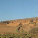 Ciemats pustuksnesī, Marokas vidienē. Salipināts kopā no māliem.